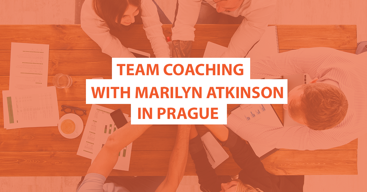Team Coaching with Marilyn Atkinson in Prague